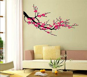 Paint & Coating Supplier in UAE